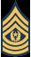 Dowódca sierżant major
